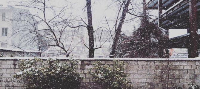 برف به دور هم بودنش زیبا بود