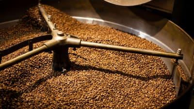 کمی در مورد قهوه بیشتر بدانیم {۲}